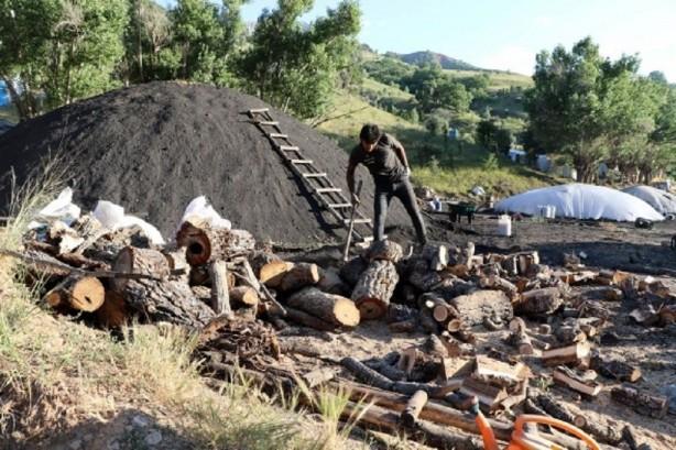 Pikniklerin ateş kaynağı mangal kömürleri bin bir zorlukla üretiliyor