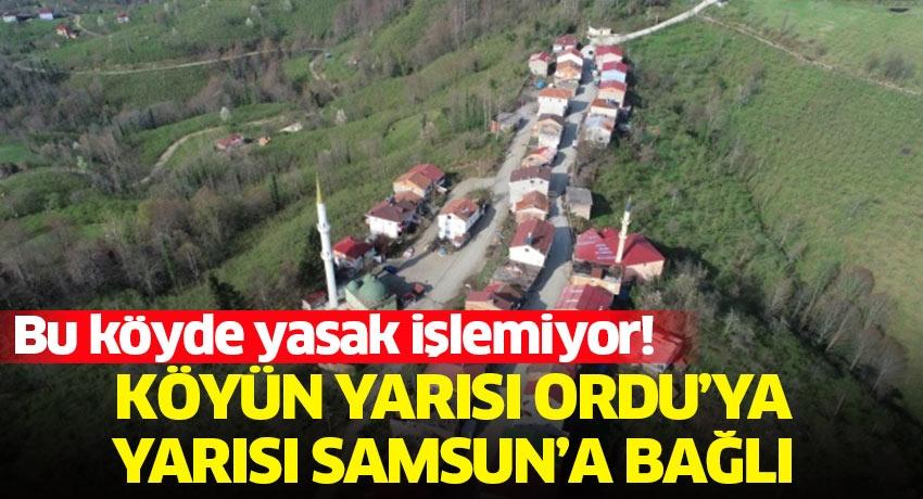 Köyün yarısı Ordu'ya yarısı Samsun'a bağlı