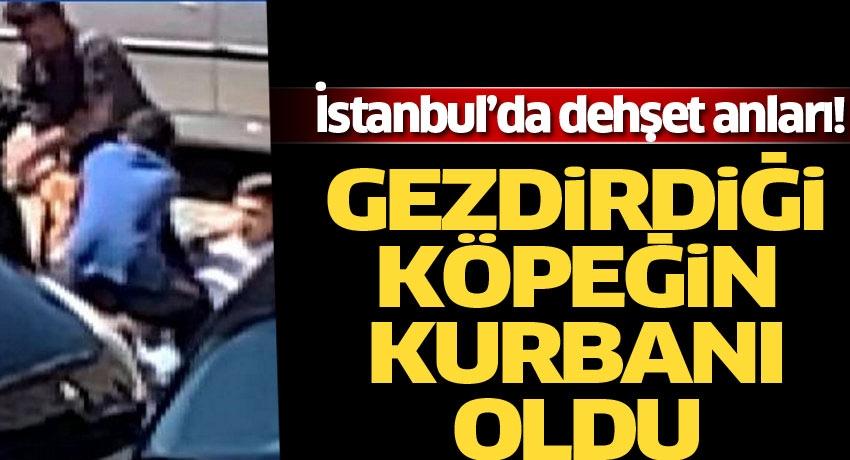 İstanbul'da dehşet anları! Gezdirdiği köpeğin kurbanı oldu