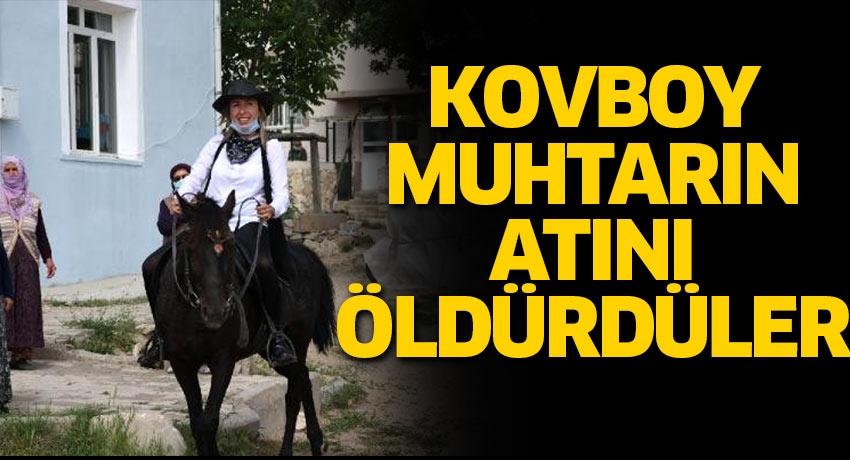 Kovboy muhtarın atını öldürdüler