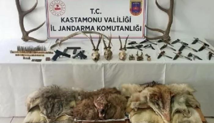 Geyik, karaca, kurt ve boz ayı avladı, bedeli ağır oldu