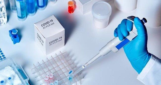 Şaşırtan sonuç! Koronavirüsün etkilerini yok ediyor!