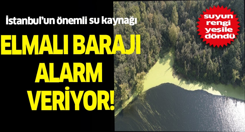 İstanbul'un önemli su kaynağı Elmalı Barajı kirliliği ile dikkat çekiyor.