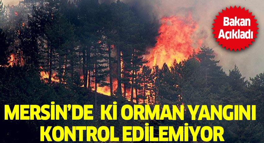 Mersin'de orman yangını sürüyor! İskenderun'da ki orman yangını sabotaj mı?