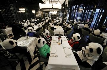 Koronavirüs yüzünden restorantı kapatılan şahıs, farklı bir protestoya imza attı
