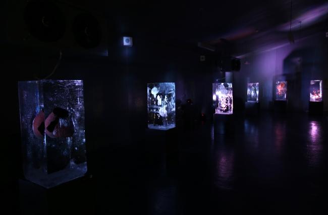 Türkiye'nin tek buz müzesi: Ata Buz Müzesi
