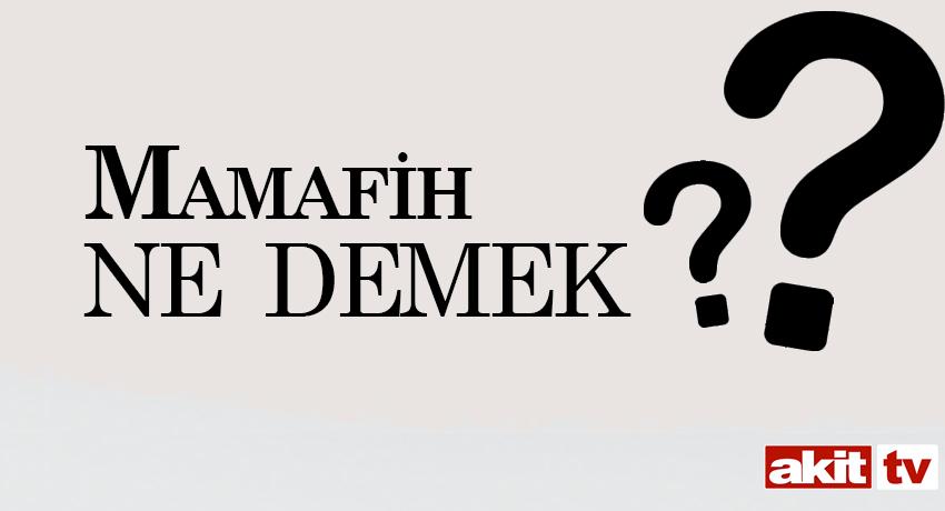 Mamafih ne demek? Mamafih nedir? Mamafih TDK kelime anlamı