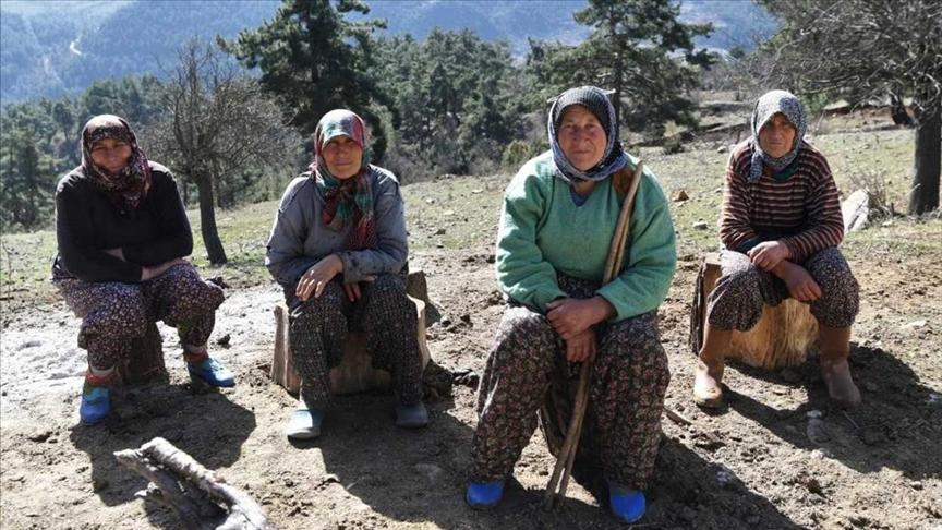 Antalya'da 11 kız kardeşli 70 yaşındaki kadının 62 yıllık çobanlık hikayesi ilgi çekiyor