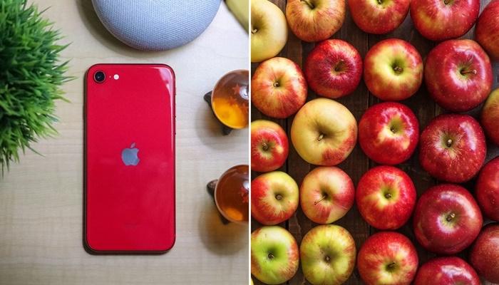 Marketten elma sipariş etti iPhone SE (2020) kazandı
