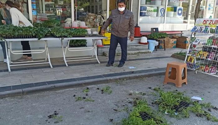 Düzce'de İsrail'in tohum ve fidelerini yerlere saçarak tepki gösterdiler