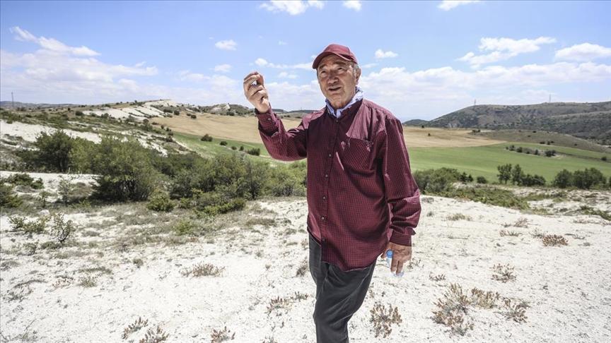 Türkiye'nin önde gelen bitki bilimcisi Prof. Dr. Mecit Vural 48 yıldır bitkilerin izini sürüyor
