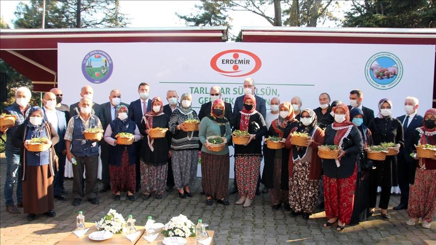 'Osmanlı çileği' coğrafi işaret tescil belgesi aldı