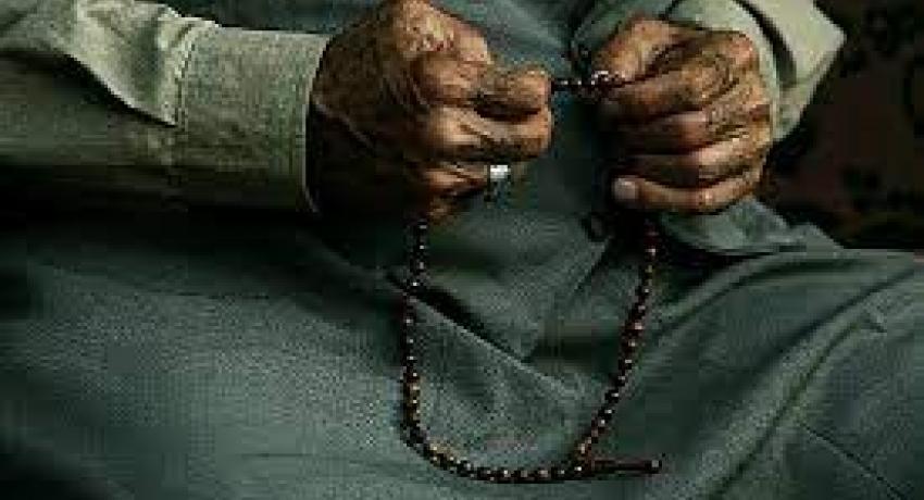 Her şey Allah'ı tesbih eder