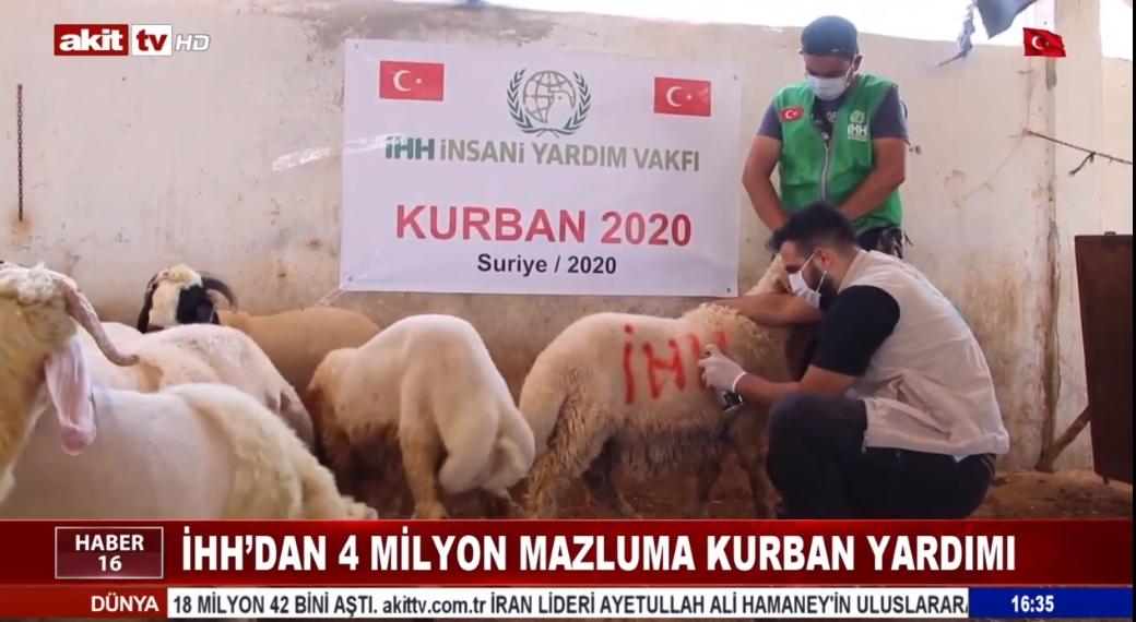 İHH'dan 4 milyon mazluma kurban yardımı