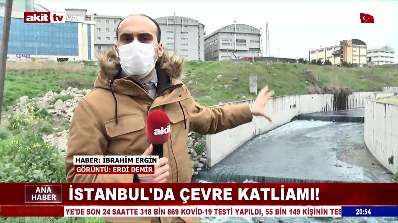 İstanbul'da Çevre Katliamı !